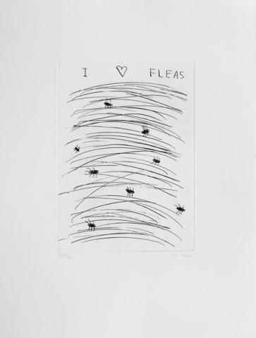 David Shrigley I Love Fleas (11)